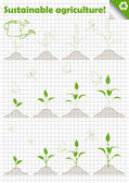 Branch of sprout with green leaves vector background — Stock Vector