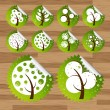 Collection of green eco-icon trees — Stockvectorbeeld