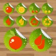 Collection of green biologicaly clean fruits — Imagens vectoriais em stock