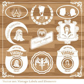 Vintage labels food, wine, fruit vector set — Stock Vector