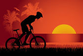 Mountain biker sunset background — Stock Vector