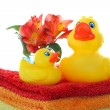Royalty-Free Stock Photo: Rubber ducks on white with copy space.