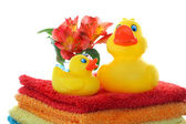 Rubber ducks on white with copy space. — Stock Photo