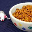 Stock Photo: Bowl of cat kibble and play mouse