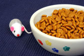 Bowl of cat kibble and play mouse — Stock Photo