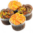 Autumn decorated chocolate cupcakes on white with copy space. — Stock Photo