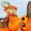 Scarecrow Boy and Pumpkins — Stock Photo