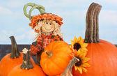 Scarecrow Boy and Pumpkins — Stock Photo