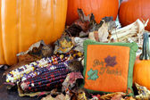 Pumpkins, leaves and Indian corn with a Give Thanks pillow. — Stock Photo