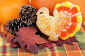 Turkey cookie with pumpkins, leaves and pine cones. — Stock Photo