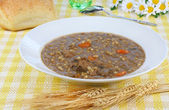Beef Barley Soup — Stock Photo
