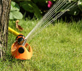 Irrigation sprinkler watering grass — 图库照片