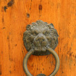 Door handle in the shape of a lion — Stock Photo #4564418