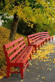 Red Benches — Stock Photo
