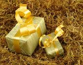 Oro presenta en musgo — Foto de Stock