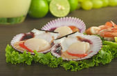 Scallops on Lettuce — Stock Photo