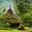 Small Hut in Northern Colombia — Stock Photo