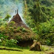Small Hut in Northern Colombia - Stock Photo