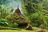 Small Hut in Northern Colombia — Stockfoto