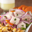 Peruvian-Style Ceviche — Stock Photo