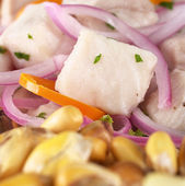 Peruvian-Style Ceviche — Stock Photo