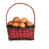 Eggs on Moss in Basket — Stock Photo