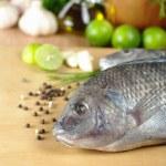 Fish Called Tilapia — Stock Photo #5331224