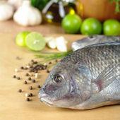 Fish Called Tilapia — Stock Photo
