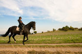 Equestrienne and a horse. — Stock Photo