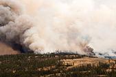 Yellowstone on Fire — Stock Photo