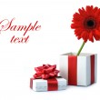 Gift and red flower — Stock Photo
