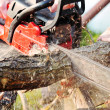 Chainsaw — Stock Photo #4378773