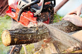 Chainsaw — Stock Photo