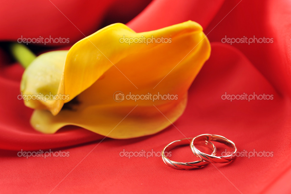 Wedding rings and yellow flower on red background  Zdjcie stockowe #4609342