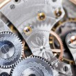 Disassembled watch — Stock Photo