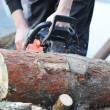 Chainsaw — Stock Photo #5054697