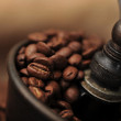 Manual coffee grinder — Stock Photo #5088797