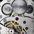 Watch gears — Stock Photo #5128007