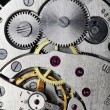 Watch gears — Stock Photo