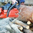 Chainsaw — Stock Photo #5361815