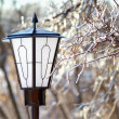 Street Lantern and frozen tree branch closeup — Stock Photo