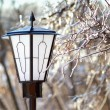 Street Lantern and frozen tree branch closeup - Stock Photo