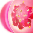 Pink Christmas balls - Stock Photo