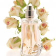 Bottle of perfume with roses - Stock fotografie