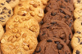 Diverse cookies — Stockfoto