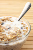 Muesli with milk close-up — Foto Stock