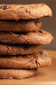 チョコレート クッキー — ストック写真