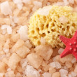 Bath salt, sponge and starfish — Stock Photo