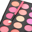 Blushes palette and applicator — Stock Photo #4872001