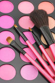Blushes palette and brushes — Stockfoto